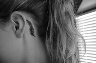 Feather tattoo on back ear