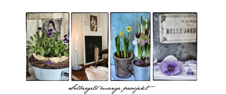 Solbergets mange prosjekt