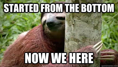 Meme Fights ! Kunky je te défie !!! - Page 2 Sloth-meme-foundeffect-tumblr