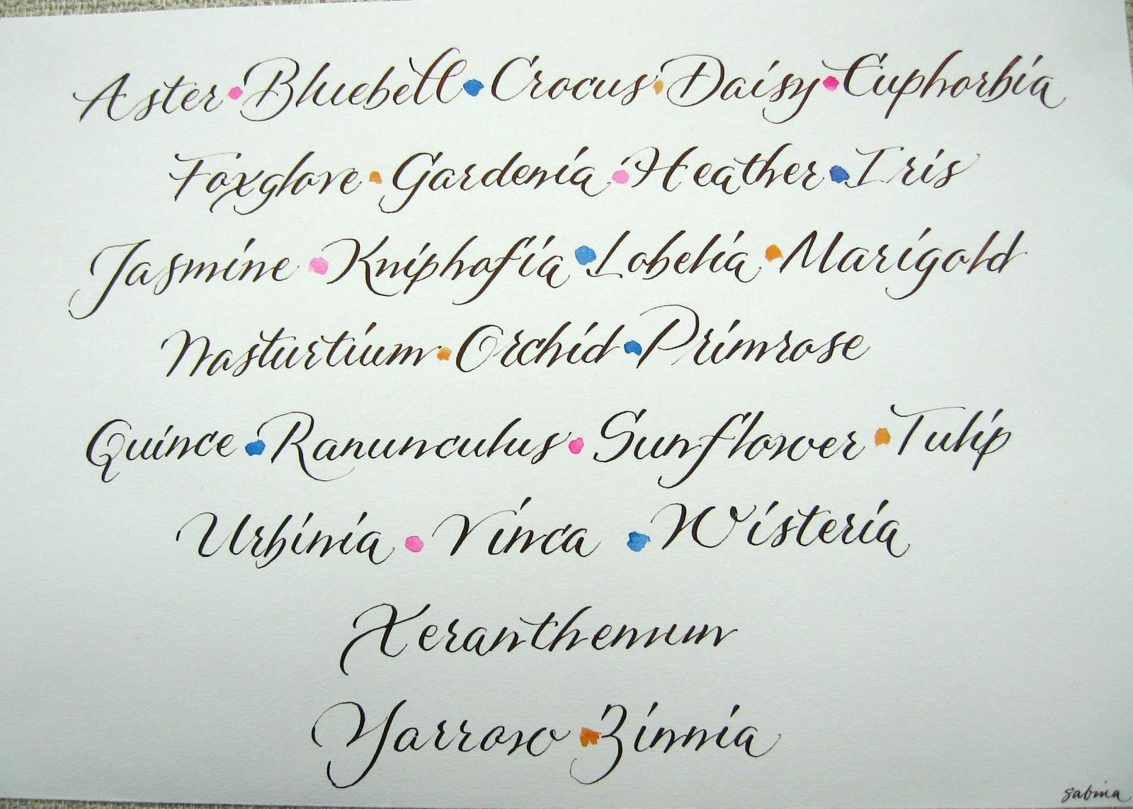 Deann Singh Calligraphy November 7 2011 Pointed Pen