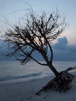 Pulau Besar at dusk
