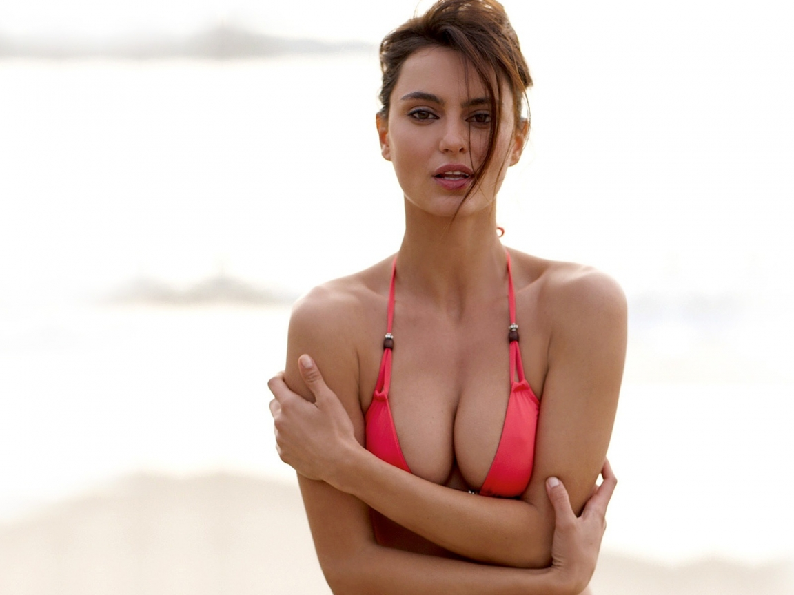 catrinel menghia latest hot bikini hd wallpaper 2012 2013