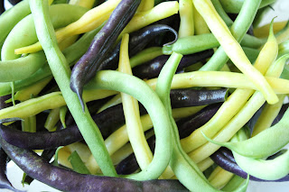 green, purple and yellow green beans
