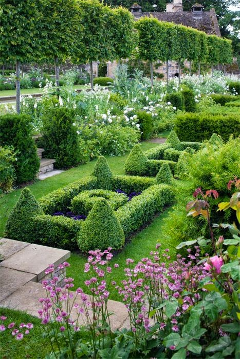 French backyard garden