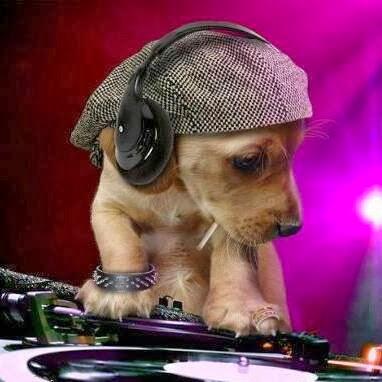 mon pote DJ David RmX