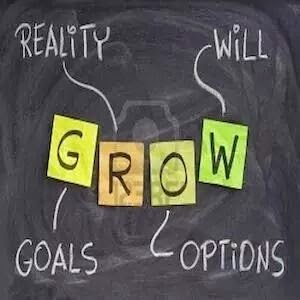 Reality-Will-Options-Goals-Lead-To-Growth
