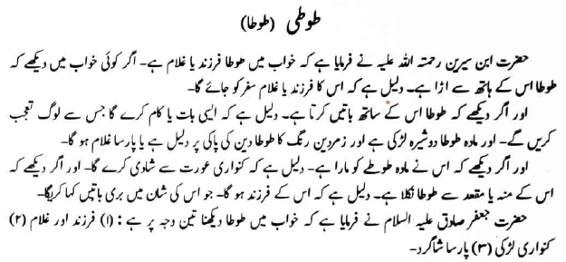 Khawab mein tota, Toti dekhna, Seeing parrot in dreams from famous book tabeer ur roya by imam ibn e Sereen