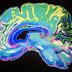 Τι συμβαίνει στον εγκέφαλο ενός ατόμου με κατάθλιψη (βίντεο)