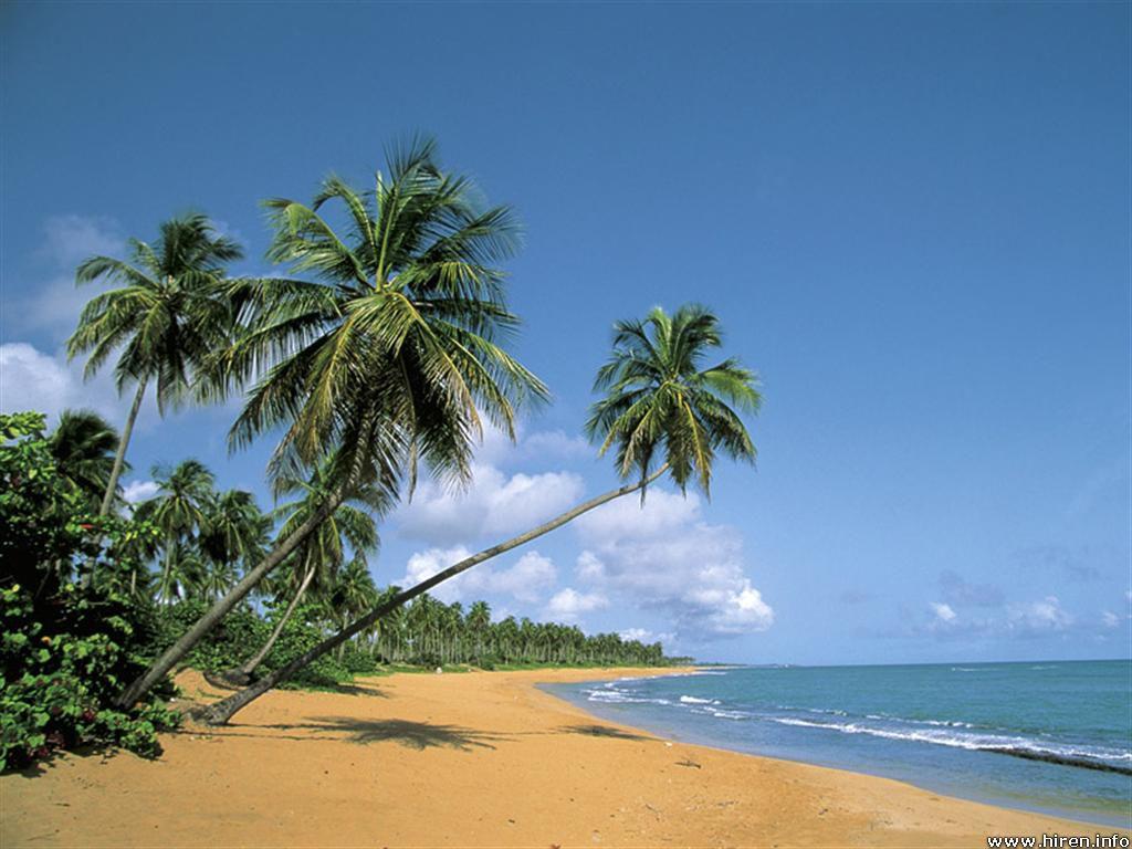 http://2.bp.blogspot.com/-Q9ypvKwn8CE/TcUdrhU0fLI/AAAAAAAABVw/FtnqscVrWww/s1600/deserted-beach_puerto-rico.jpg