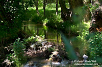 moncayo rio Val Los Fayos