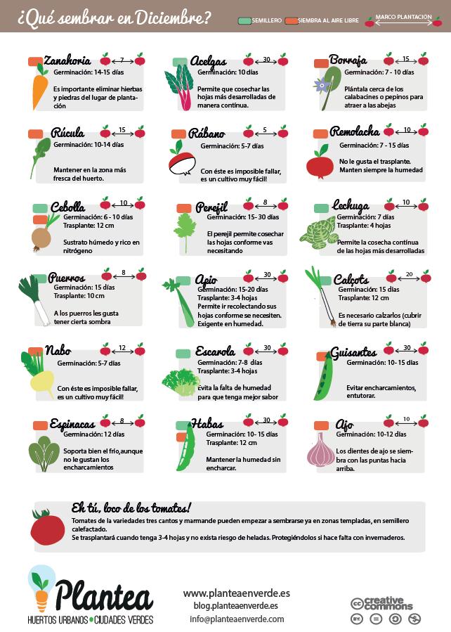 El huerto en macetas qu sembrar en diciembre - Que plantar en el huerto ...