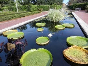 New Orleans Botanical Gardens,  Louisiana