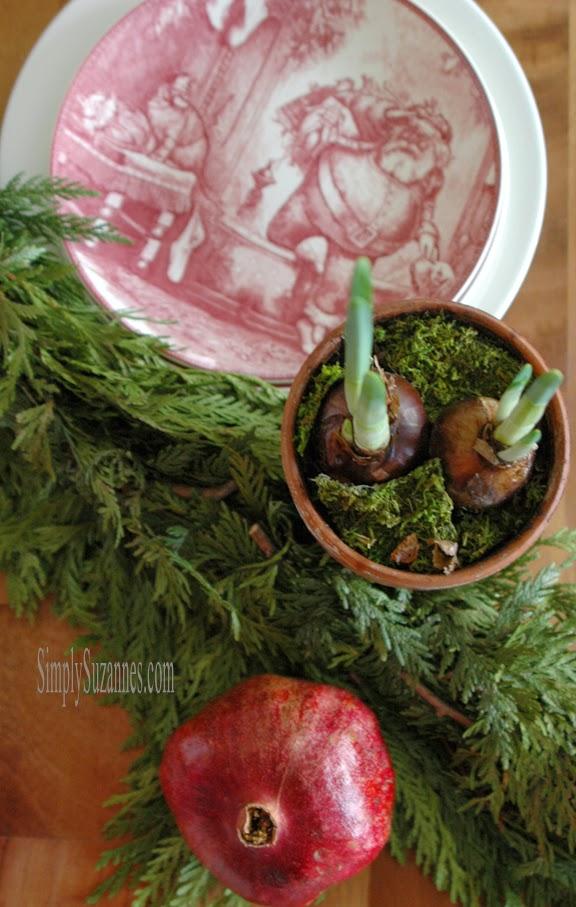 paperwhites & pomegranates