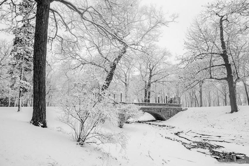Portland, Maine Winter Deering Oaks Park Bridge in Snow photo by Corey Templeton