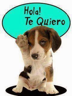 Hola Te Quiero