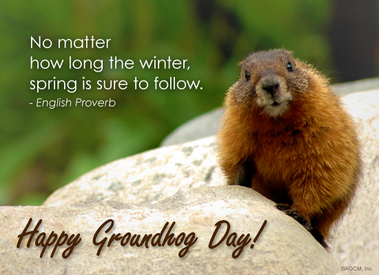 Groundhog Day Wallpapers - Wallpaper Cave