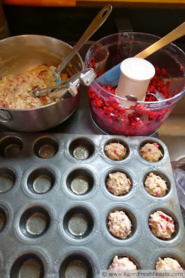 Mini Cranberry Yogurt Oatmeal Muffins | Farm Fresh Feasts