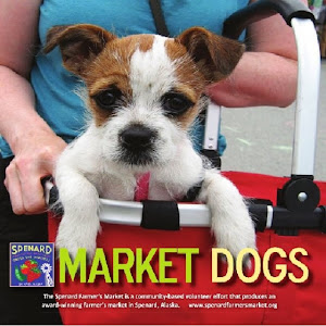 Market Dogs eBook (iBooks for iPad format) Now Available!