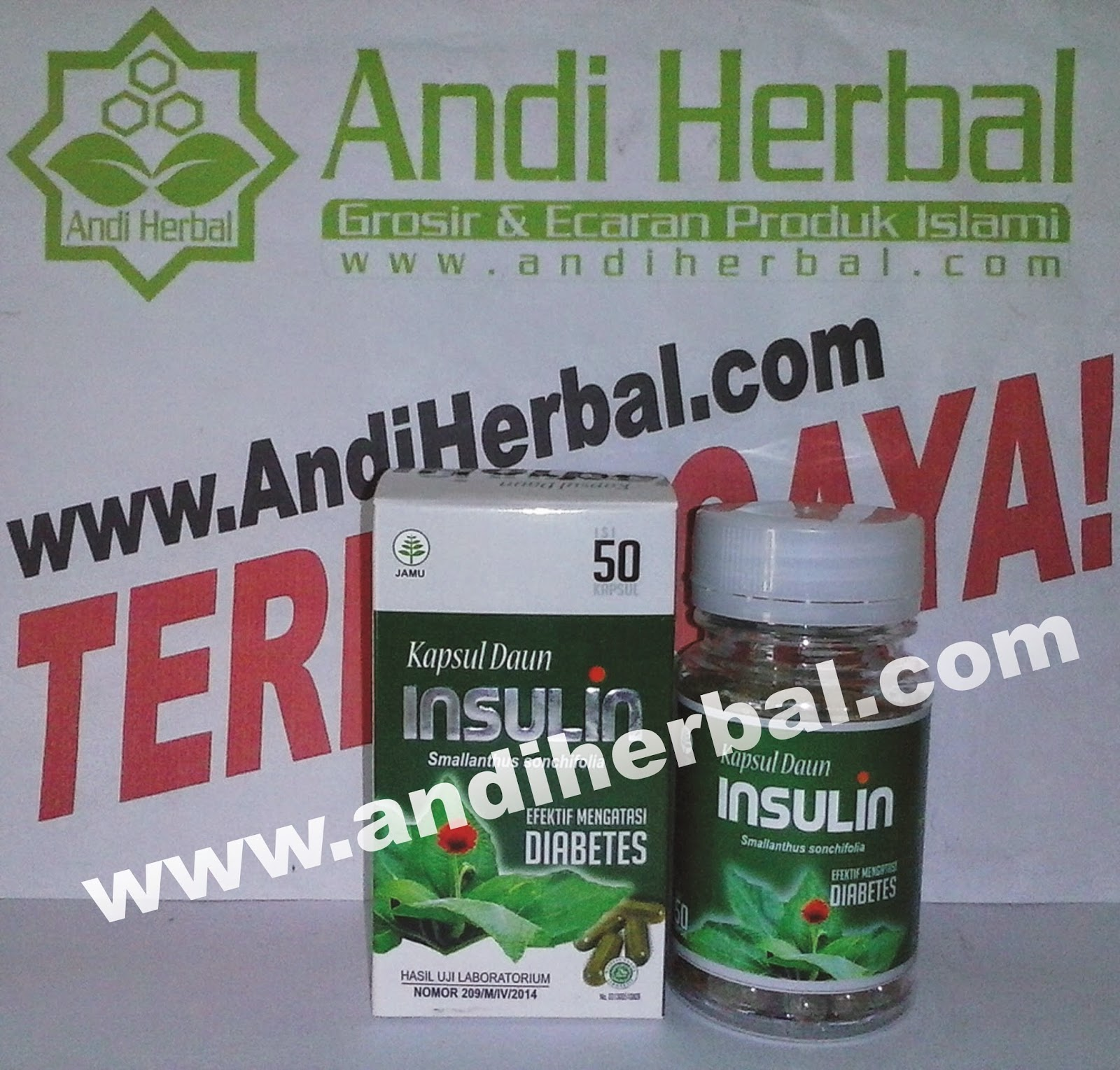 Kapsul Daun Insulin Herbal Diabetes Andiherbal.com