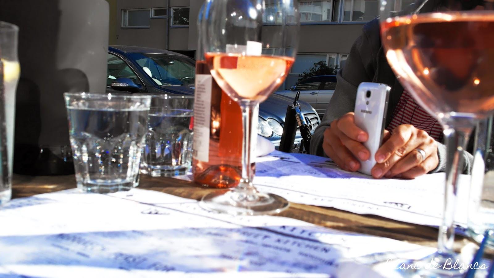 Sandron terassi ja roséviini - www.blancdeblancs.fi