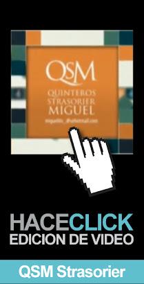 Video QsM