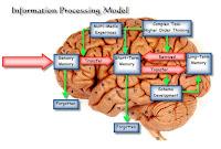 klasifikasi model pembelajaran berdasarkan teori pemrosesan informasi