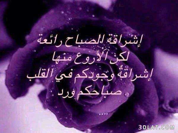 صور صباح الخير Photos Good Morning 13434406302.jpg