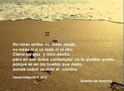 HUELLAS...