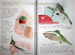 Sketchbook Galleries