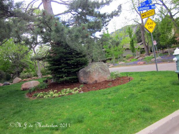 elegant landscaping garden