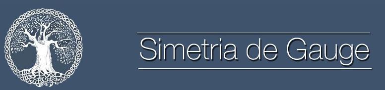 Simetria de Gauge