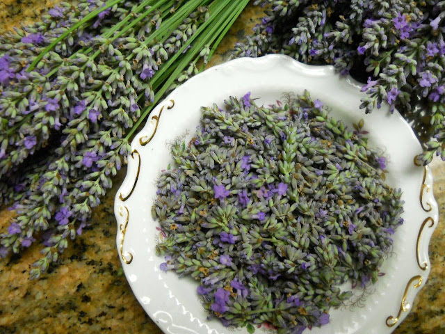 Lavender stems and flowers