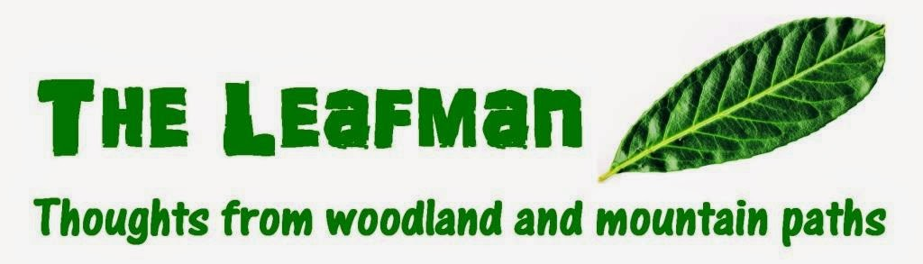 The Leafman - John Pearce - thoughts from woodland paths and mountains
