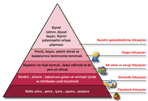 erikson and maslow Compare (similarities and differences) between abraham maslow and sigmund freud in terms of their cognitive, physical, and social-emotional developmental processesthe cognitive developmental process involves the ability to.
