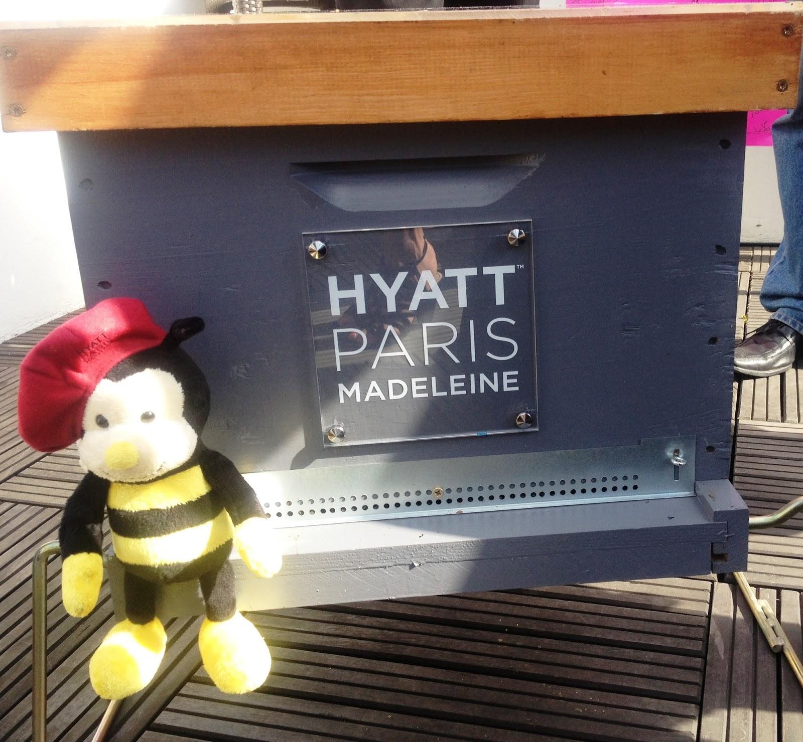 garden of aaron ah to bee in paris. Black Bedroom Furniture Sets. Home Design Ideas