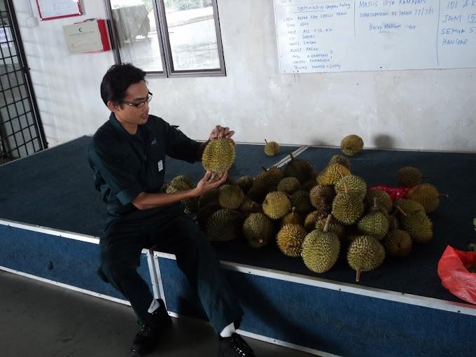Durian versi Russia