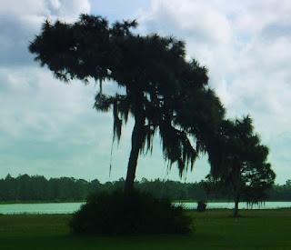 hardee lakes florida