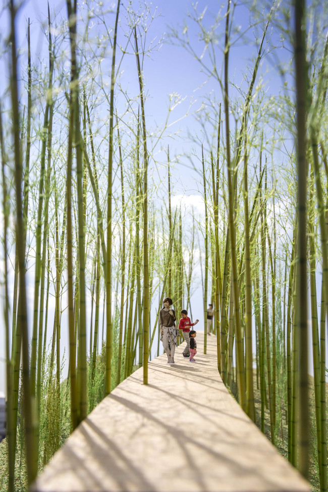 Choi's project 'Dreaming of Earth' envisions the construction of a walking trail that hangs 3-6 meters above the ground so as to protect wildlife from humans and humans from landmines.