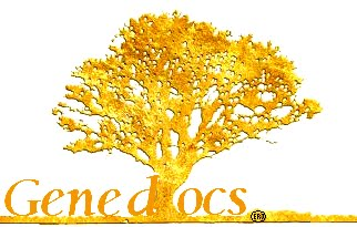 Genedocs: Family Research and Legacy Preservation