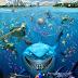 Finding Nemo (3D)