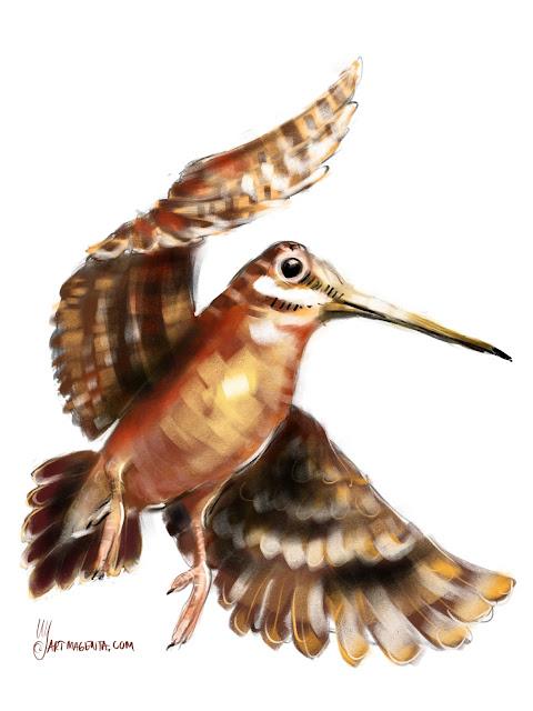 Woodcock bird painting by Artmagenta