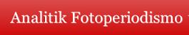 Analittik Fotoperiodismo