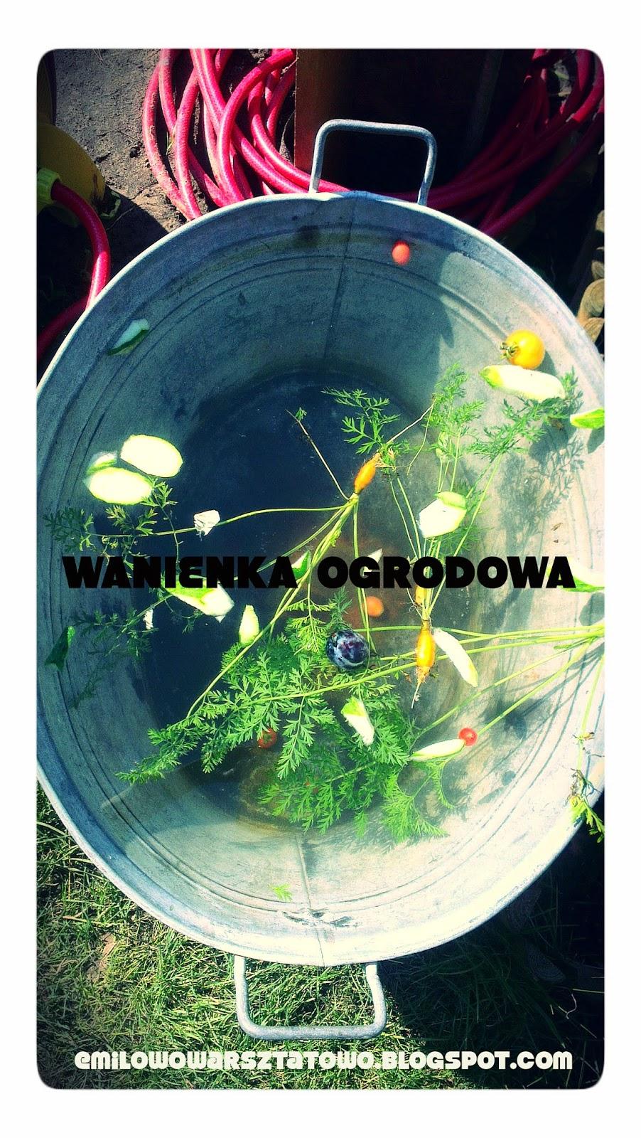 http://emilowowarsztatowo.blogspot.com/2014/08/wanienka-ogrodowa.html