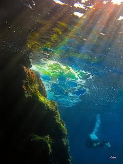 Υποβρύχια φωτογραφία Κώστας Λαδάς