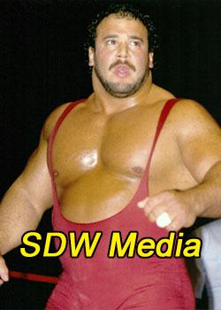 SDW Media!