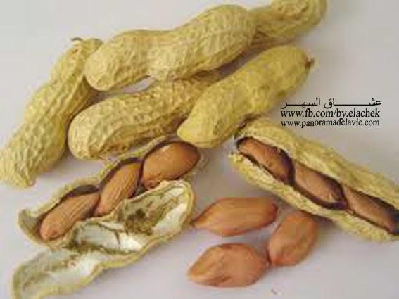 الفول السوداني