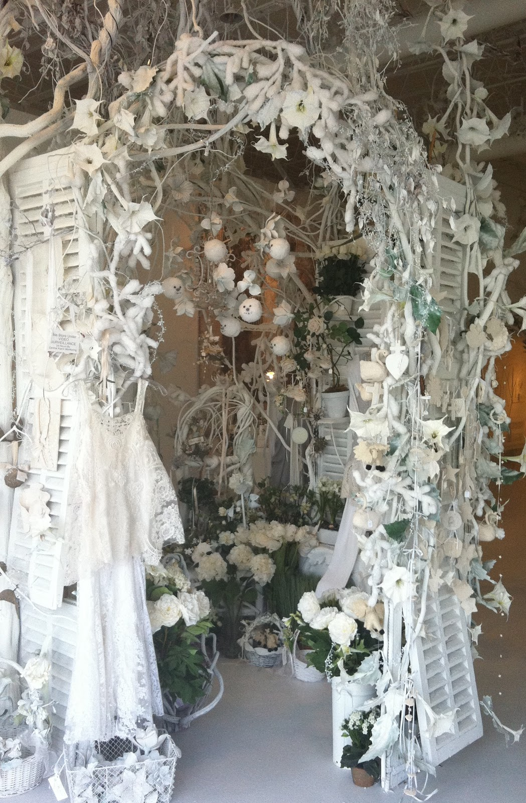 Kendall Boggs Fine Arts And Crafts White Flowers