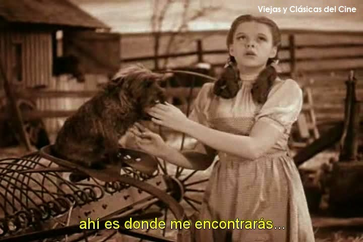 The Wizard of Oz-1