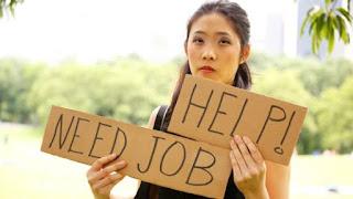 Contoh Surat Lamaran Kerja Dan CV