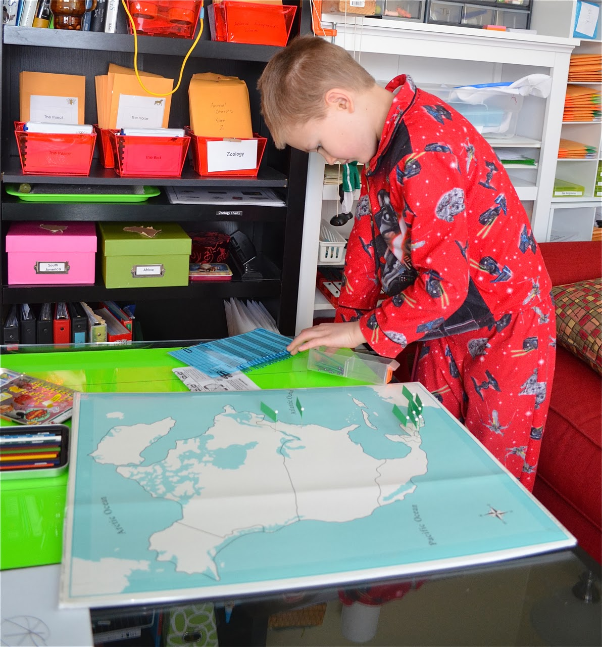 What DID we do all day? : DIY Pin Maps: Cabinet of World Parts
